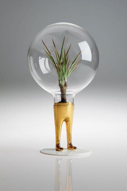 domsai-vasi-terrari-creativi-piante-matteo-cubic-07