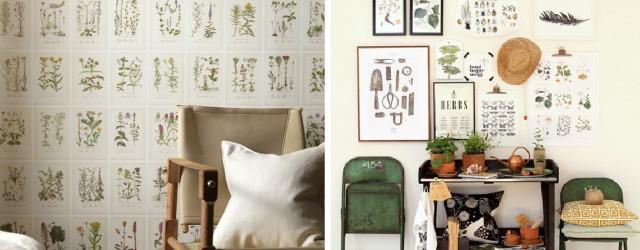 stampe-botaniche-per-arredare