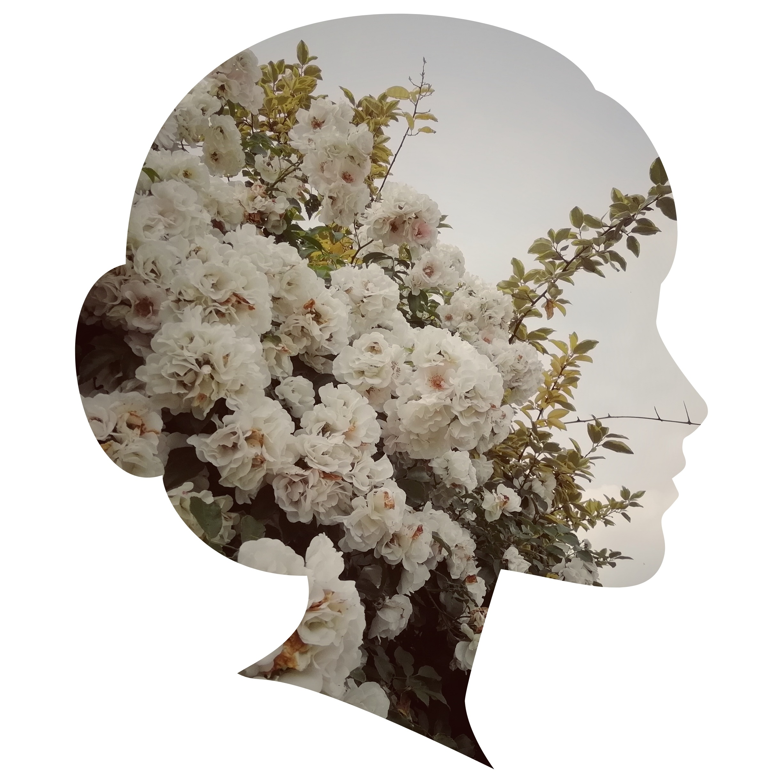 ritratti-botanici