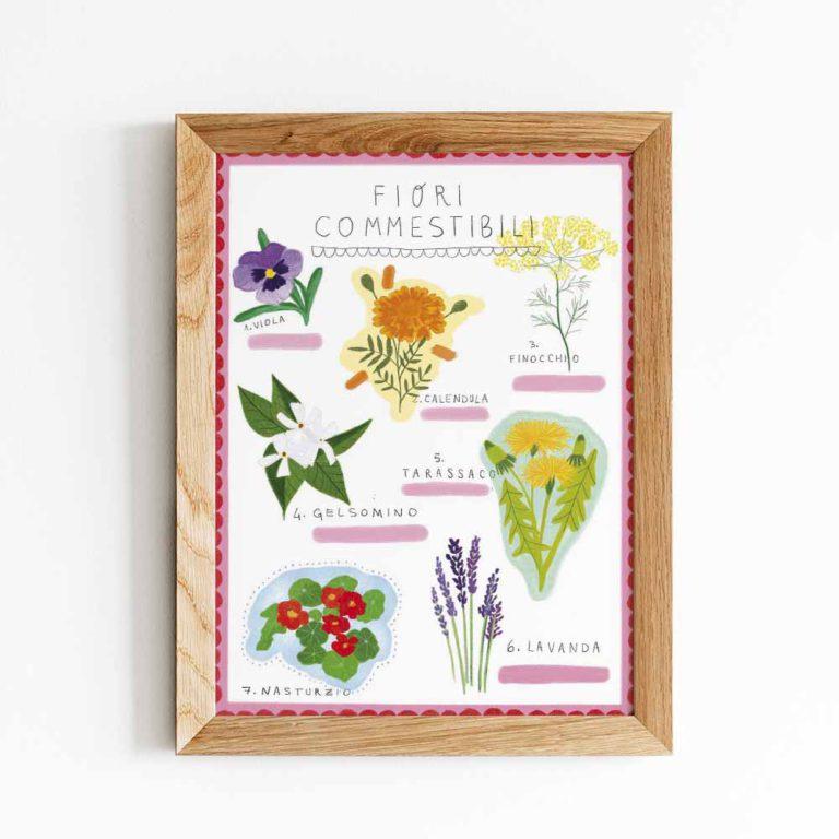 illustrazione fiori